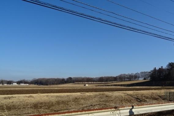 いちご園2.jpg