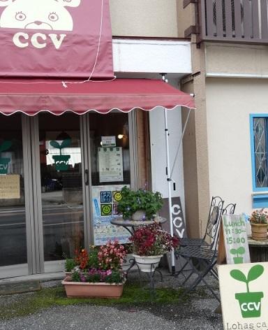 こぐまカフェ2.jpg