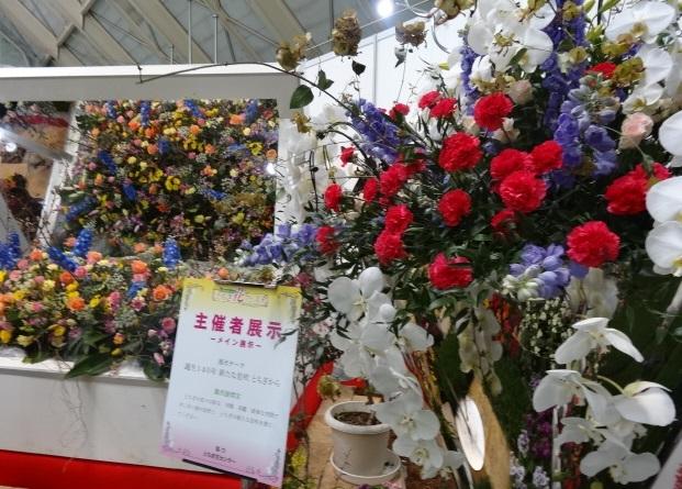 とちぎ花フェスタ3.jpg