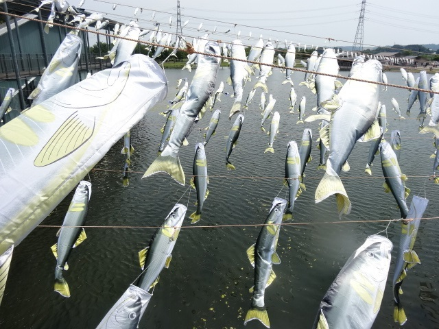 なかがわ水遊園2.jpg
