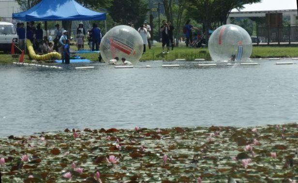 なかがわ水遊園7.jpg