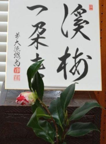 のお茶会1.jpg