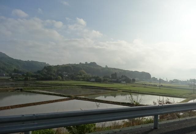 ひたち海浜公園1.jpg