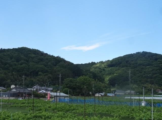 フルーツ大福0.jpg