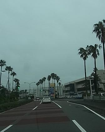 伊豆半島へ3.jpg