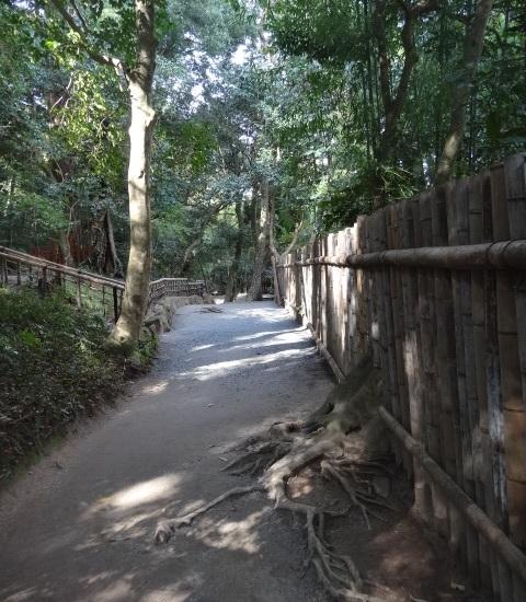 八重垣神社3.jpg