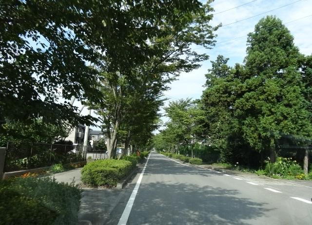 大山別邸8.jpg