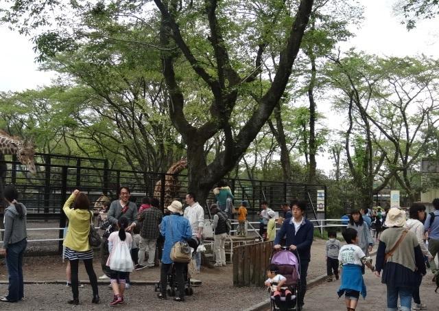 宇都宮動物園1.jpg