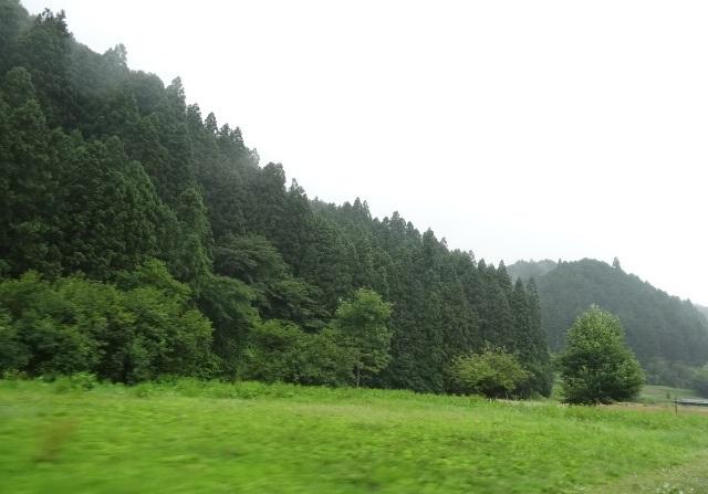 峠の茶屋1.jpg