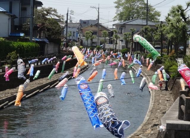 巴波川2.jpg
