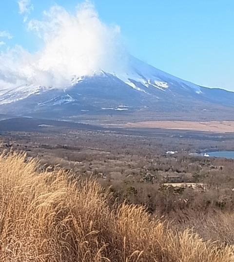 朝の富士山1.jpg