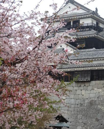 松山城6.jpg