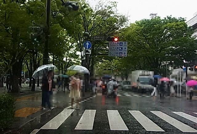 横浜の夜1.jpg
