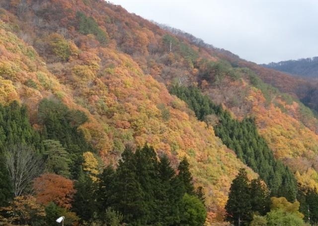 湯西川6.jpg