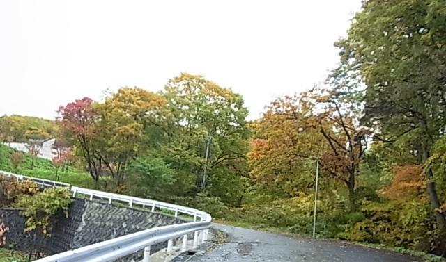 蔵王の紅葉6.jpg