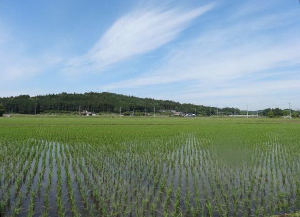 那珂川4.jpg