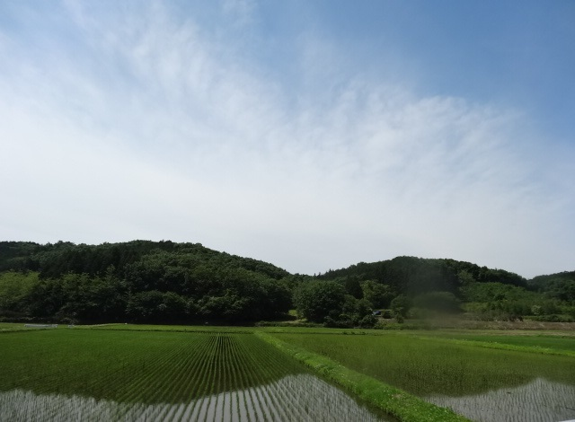 那珂川5.jpg