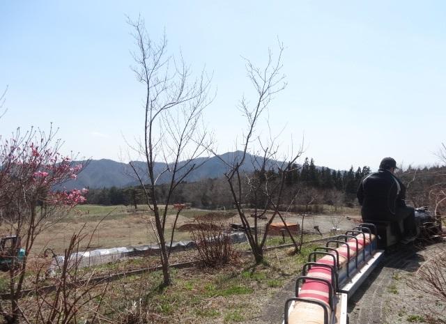 鉄道農園6.jpg