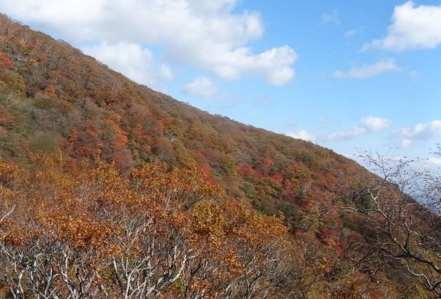 駒止の滝3.jpg