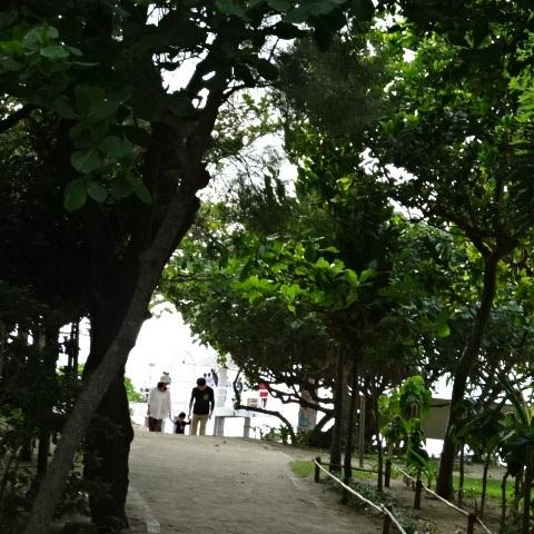 ビーチ1.jpg