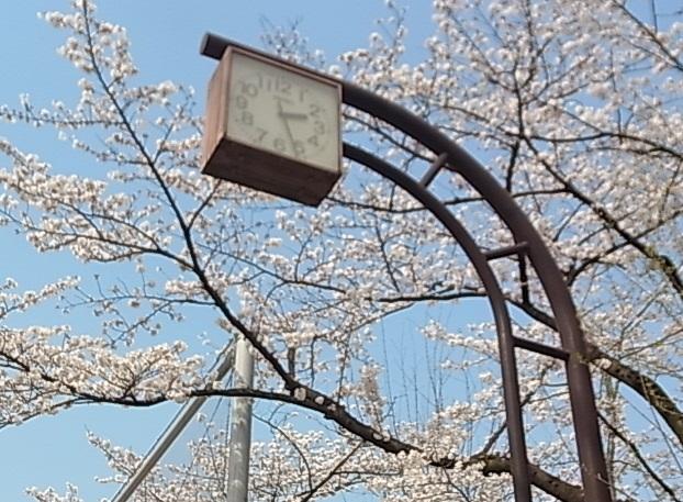 代々木八幡4.jpg