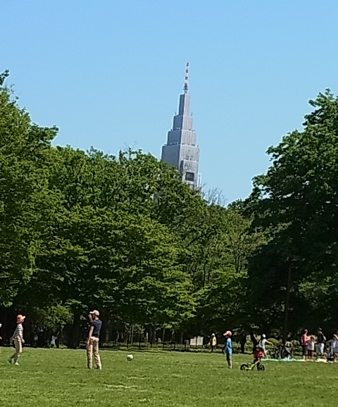 代々木公園1.jpg