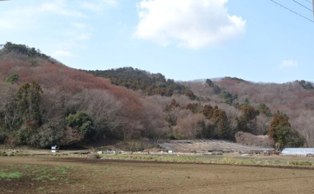 佐野へ3.jpg