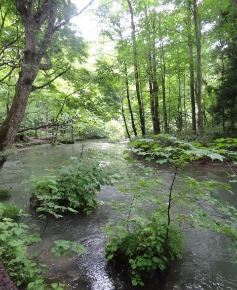 十和田湖6.jpg