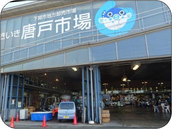 唐戸市場3.jpg