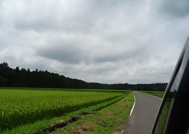 夏休みキャンプ3.jpg