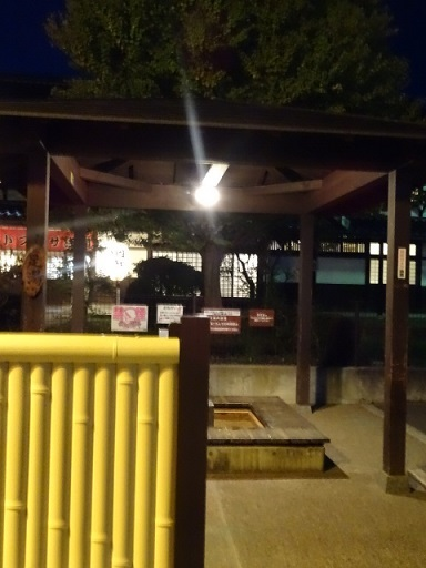 夜の散歩3.jpg