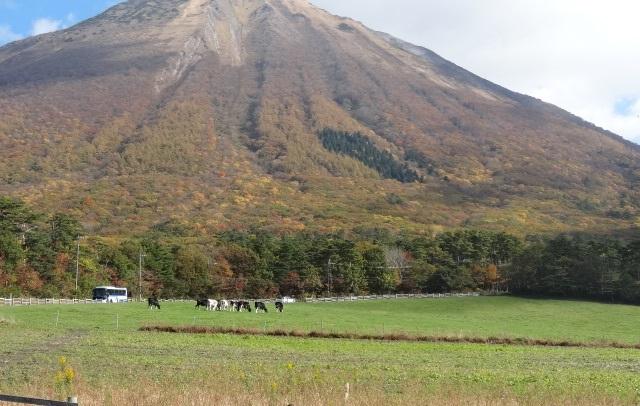 大山7.jpg