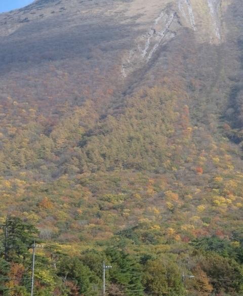 大山8.jpg