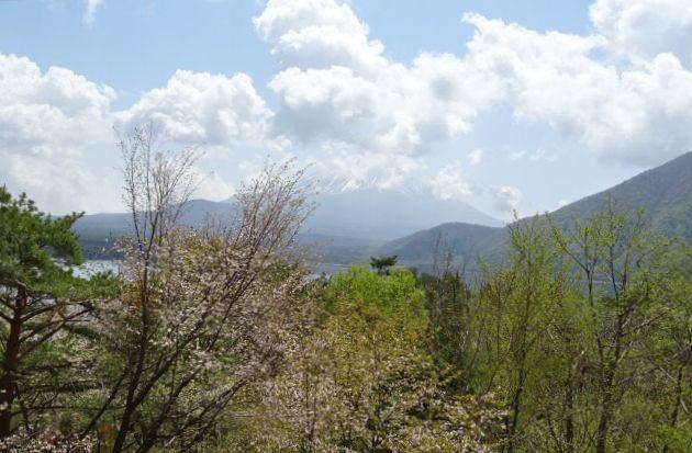 富士6.jpg