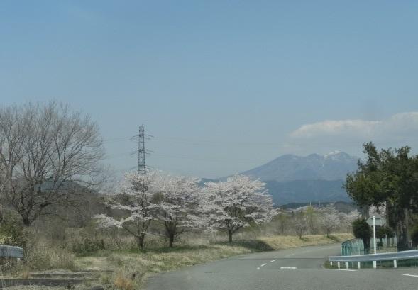 尚仁沢湧水2.jpg