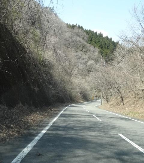 尚仁沢湧水4.jpg