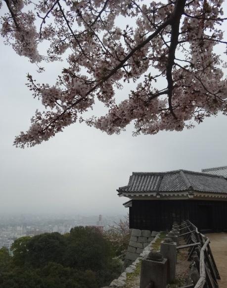 松山城0.jpg