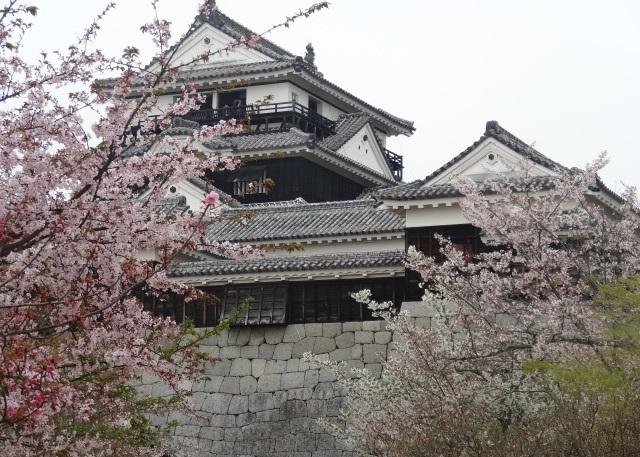松山城7.jpg