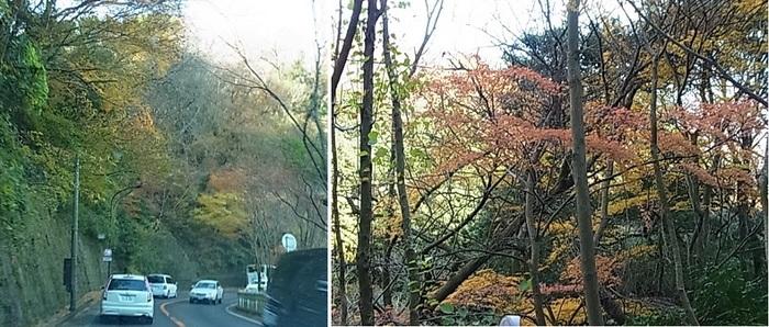 箱根湯本4.jpg