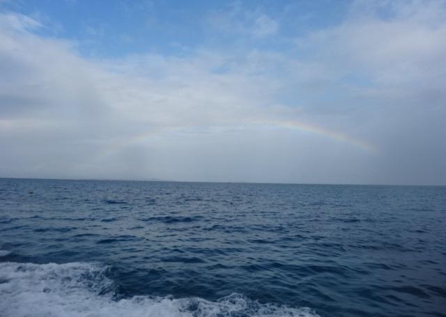 西表島0.jpg