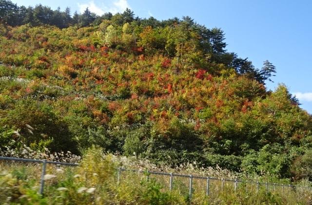 遠刈田へ1.jpg