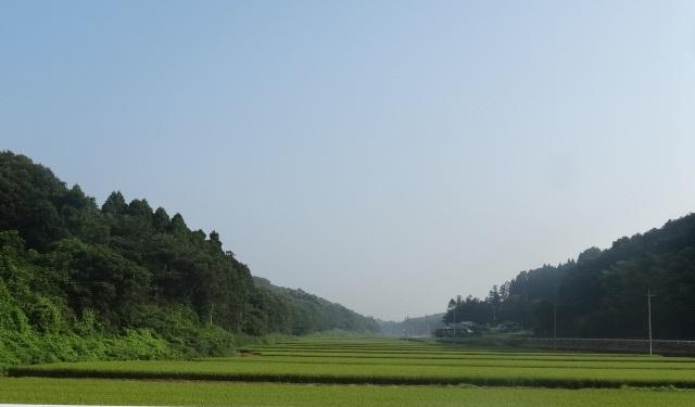 那珂川12.jpg