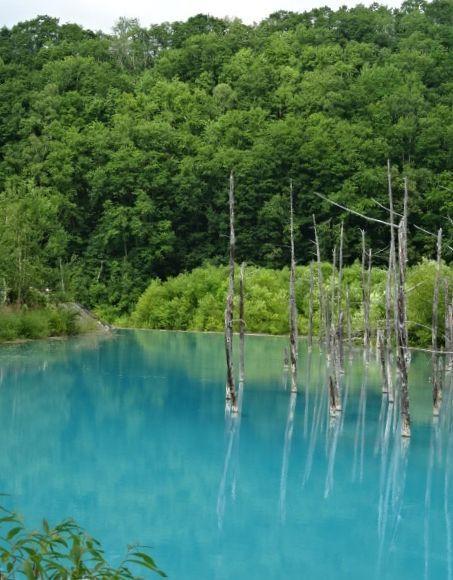 青い池6.jpg